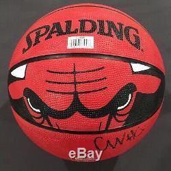 Coby White Signé Autographié Chicago Bulls Basketball Carolina Tar Heels Unc